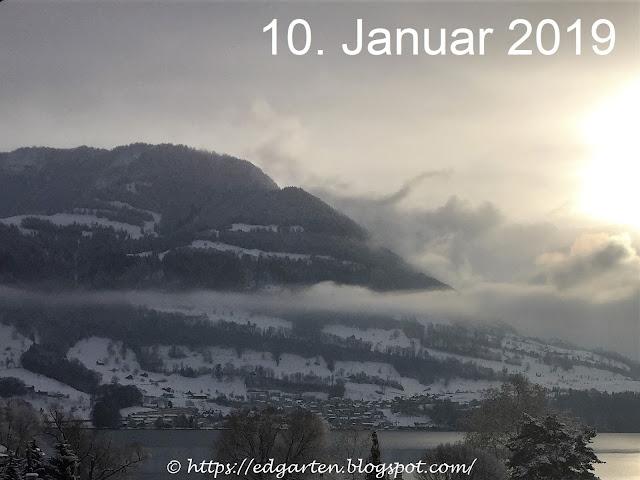 Sonne - Nebel vor der Rigi
