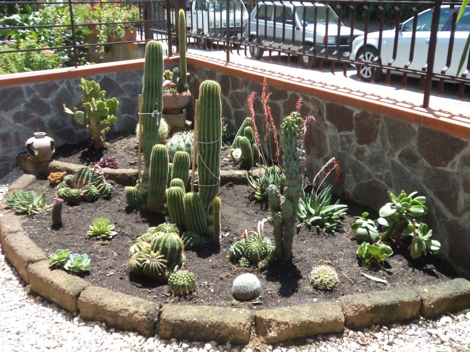 I giardini di carlo e letizia giardino di piante grasse for Piante e giardini