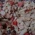 Culinária | Salada de Kani Kama.