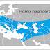 ETAPA 4 - Conviven diversas especies de homínidos
