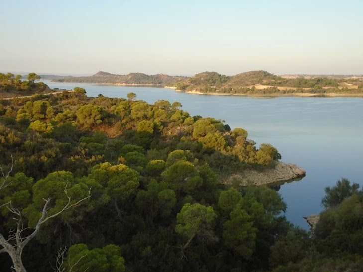 El río Ebro a su paso por el Mas de la Punta