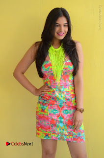 Telugu Actress Prasanna Stills in Short Dress at Inkenti Nuvve Cheppu Press Meet Stills  0019.JPG