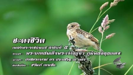Frekuensi siaran Chalermkrung TV di satelit Thaicom 6 Terbaru