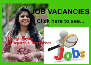 Qatar Jobs Image
