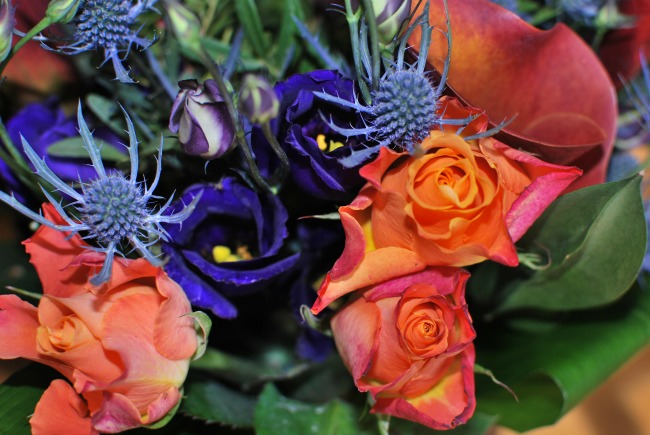 close-up-from-the-Teal-bouquet-of-the-contents-roses-thistle-calla-lily-and-campanula-