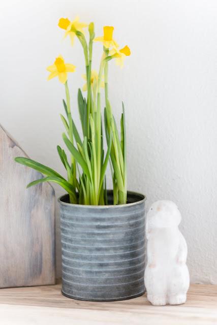Frühlingsdekoration, Pomponetti