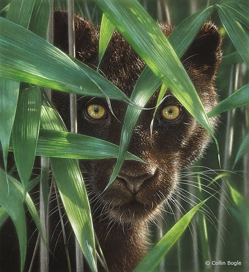 01-Black-Panther-Collin-Bogle-Animal-Wildlife-in-Art-www-designstack-co