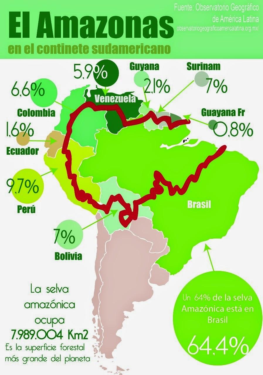 El Amazonas: el pulmón de la Tierra: Amazonas en destrucción