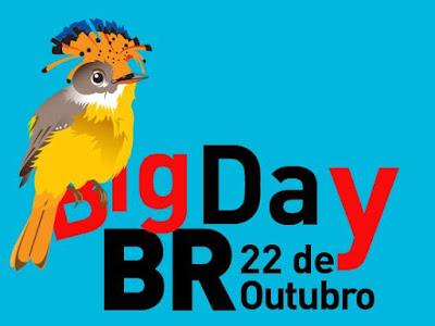 Big Day Brasil 2016, Big Day Brasil, Observação de aves, big day para observação de aves, birdwatching, birding, tocantins birding, aves, aves do brasil, observar aves, passarinhar, fotos de aves, fotografar aves, fotos de natureza, blog natureza e conservação, animal, big Day BR