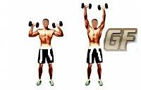 melatih otot bahu shoulder press