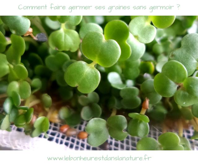 Comment faire germer ses graines et légumineuses facilement sans germoir ?