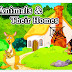 100 Animals And Their Homes List