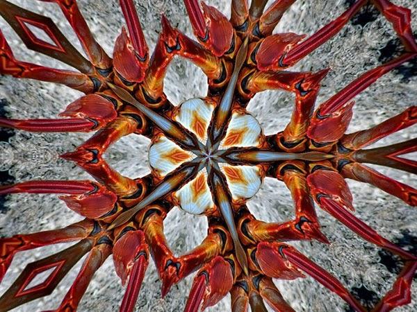 kaleidoskop online
