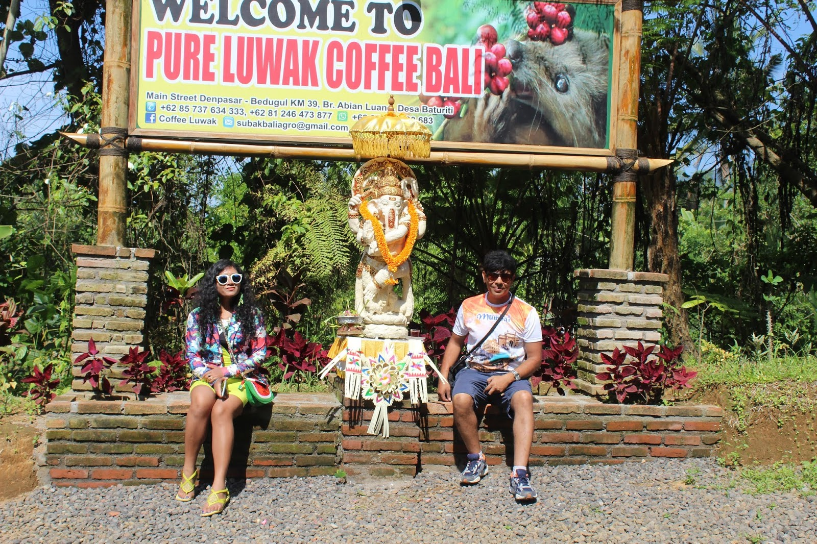 luwak coffee price  kopi ,luwak coffee amazon , luwak coffee bali  kopi, luwak coffee for sale,  luwak coffee process,  luwak coffee benefits,  kopi luwak coffee beans,  best luwak coffee brand