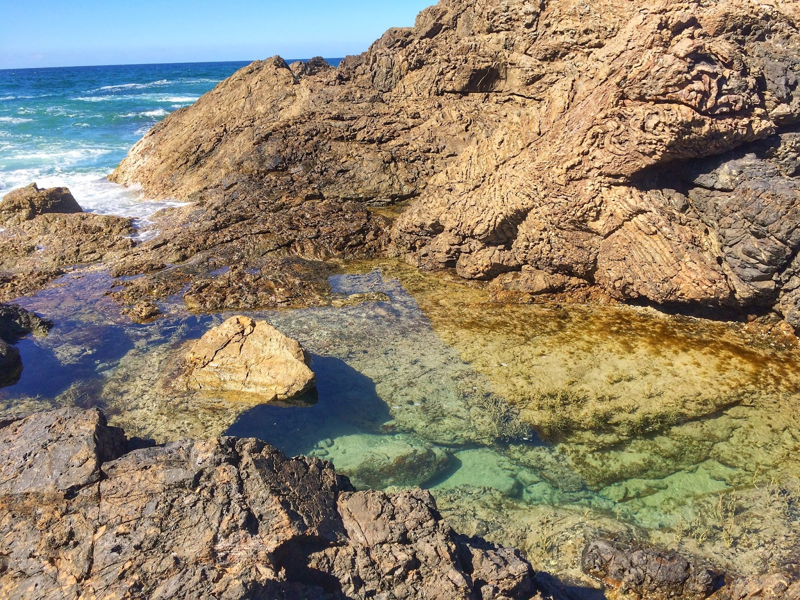 Rockpools at Little Bay Port Macquarie