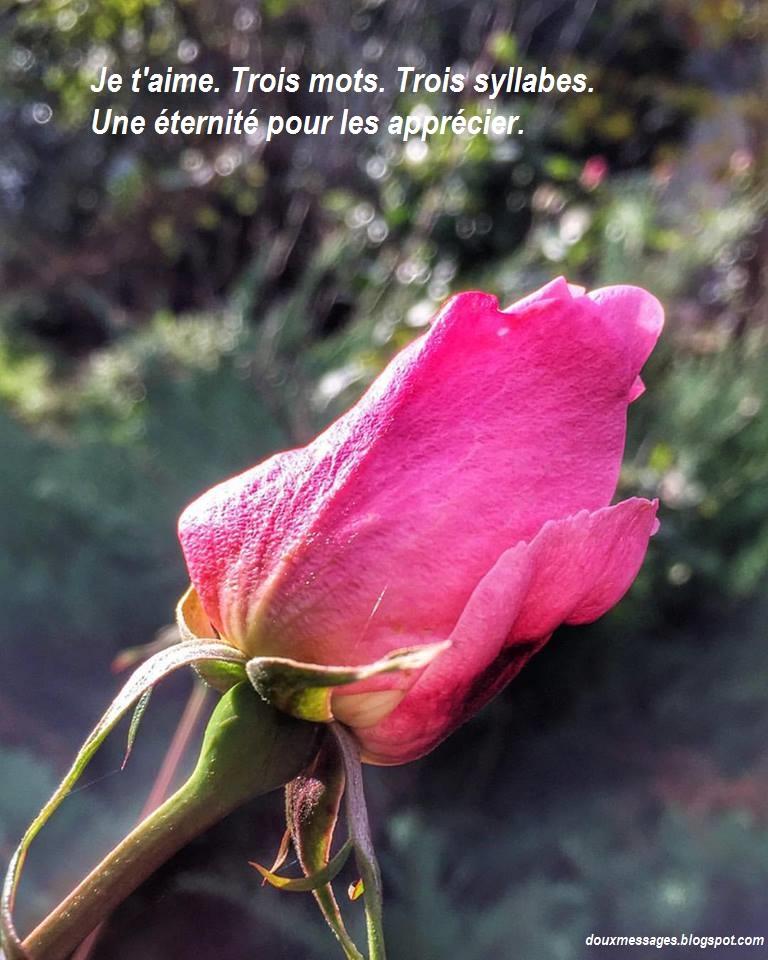 trouver une amante Saint-Quentin
