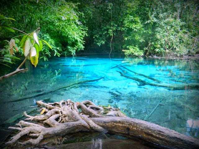 Emerald Pool & Air Terjun Hot Spring