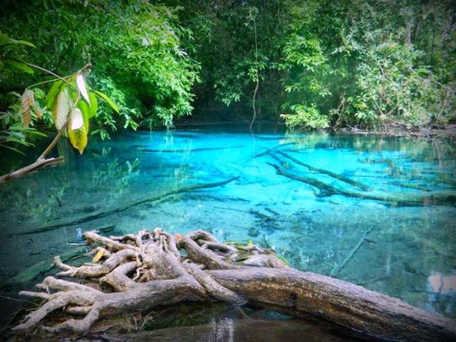 Emerald Pool & Air Terjun Hot Spring