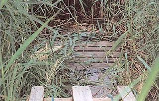 Pallen där Kevin dog