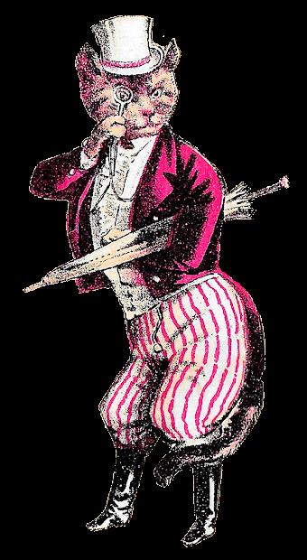 Victorian Cat Illustration