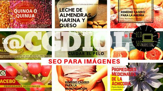 Seo-Posicionamiento para Imágenes en EcoSeo Marketing @CGDIOL