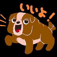 BARON BUDDIES 05 Bulldog