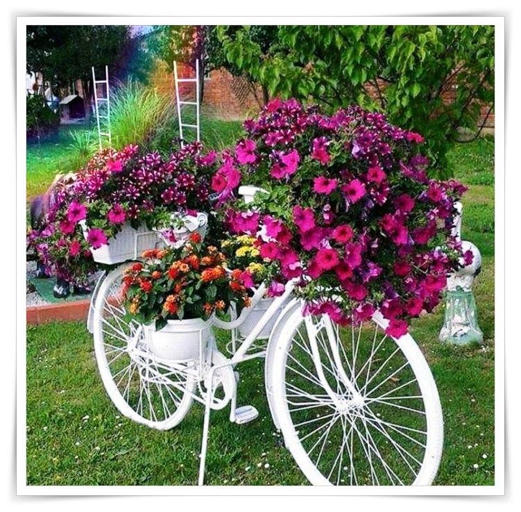 Quando as palavras fogem, as flores e a música falam por nós...