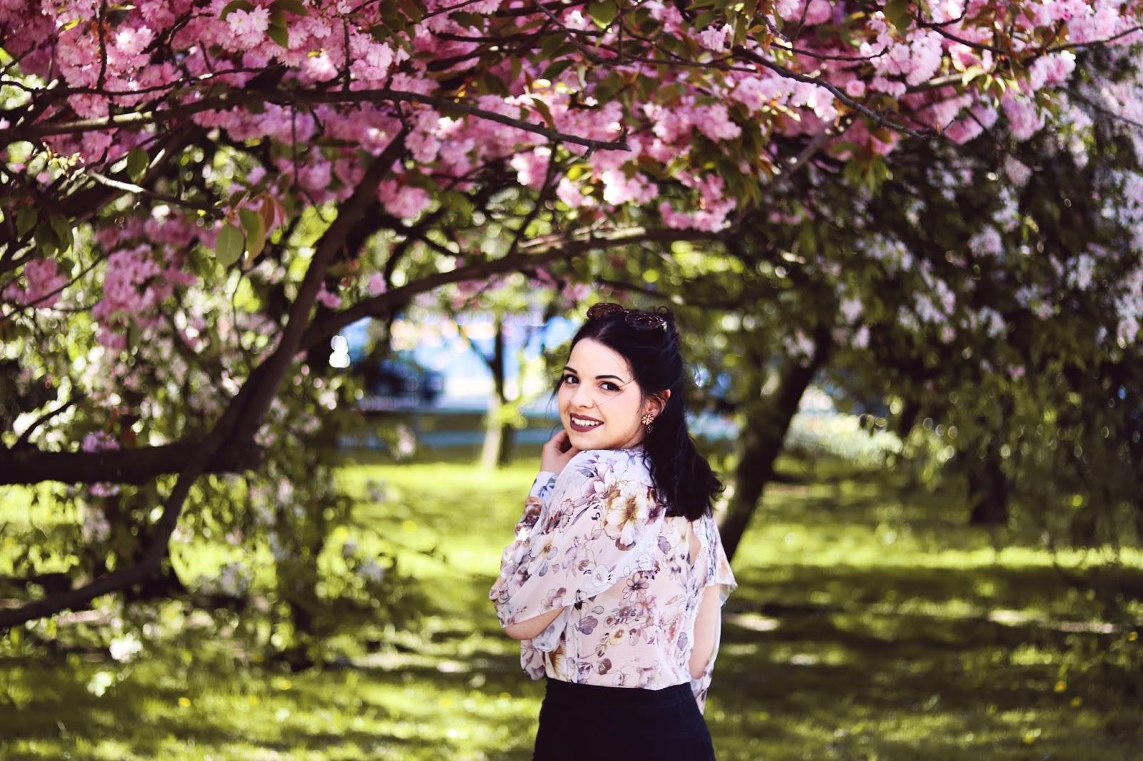 Kwitnące wiśnie w Gdańsku