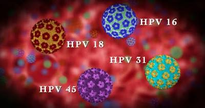 Virus penyakit kutil kelamin