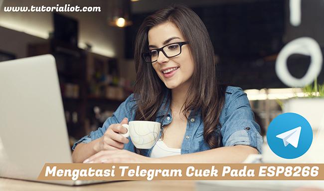 "3 Langkah Mudah Mengatasi Telegram Cuek ""No Reply"" Pada ESP8266"
