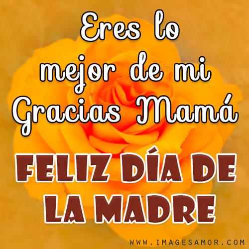 Gracias mamá mensajes y frases de feliz día de la madre