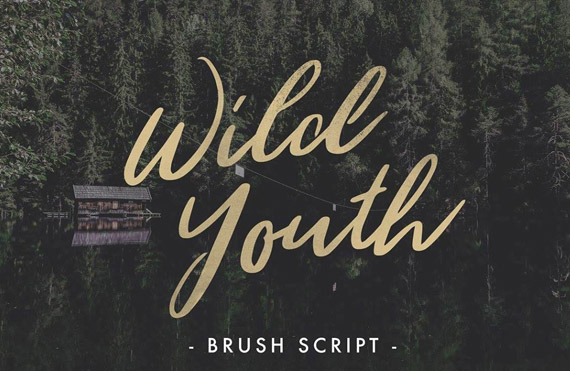 wild youth, free script handwriting style font