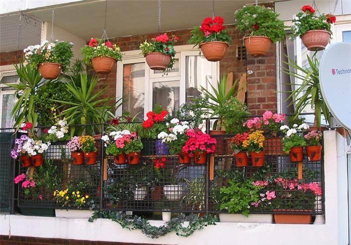 15 Ide Membuat Taman Di Balkon Rumah