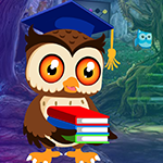 Play Games4king Degree Owl Res…