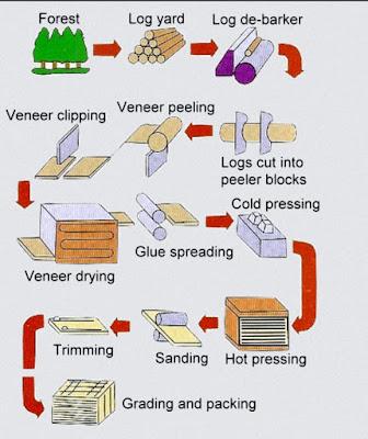 Bamboo Flooring Productions