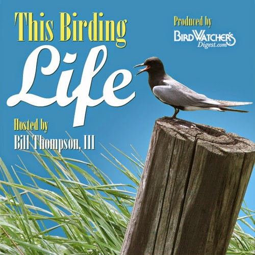 http://www.birdwatchersdigest.com/podcasts/thisbirdinglife.php