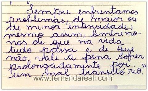 Meus Bilhetes De Amor Fernanda Reali