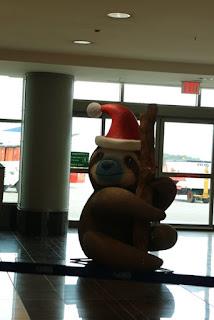 Weihnachtsmann Faultier