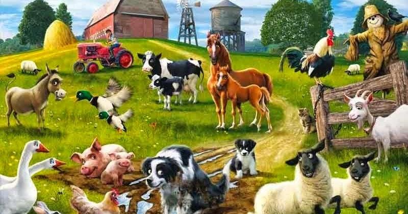 Gambar Binatang Farm
