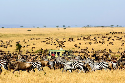 Taman Nasional Serengeti Afrika