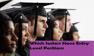 Which Sectors Have Entry Level Positions