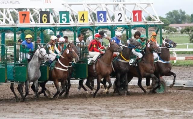 Hipódromo de La Plata Largada