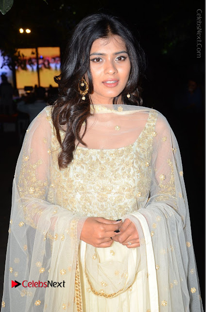 Tollywood Actress Hebah Patel Pos in Lehenga Choli at Nanna Nenu Na Boyfriends Audio Launch  0015.JPG
