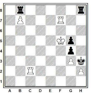 Posición de la partida Hubner - Salov (Skalleftea, 1989)