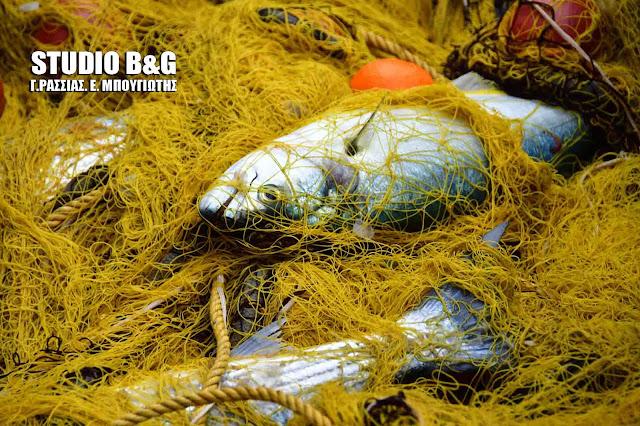 Παράταση της ημερομηνίας λήξης υποβολής αιτήσεων του Επιχειρησιακού Προγράμματος Αλιείας & Θάλασσας