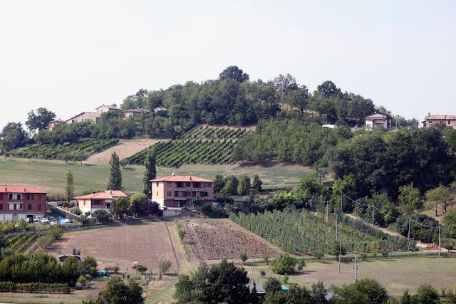 Bologna, Valsamoggia - Viinitarhoja ja koirahommia 11