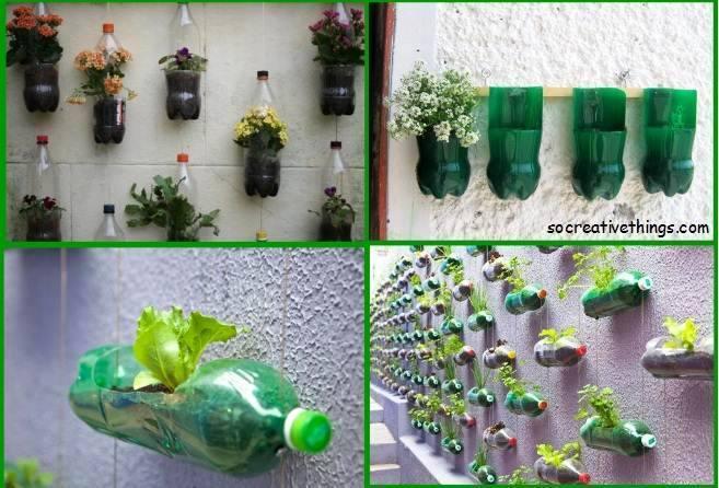 KKR Indoor Garden Ideas