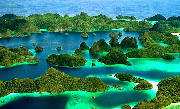 Raja Ampat with Uncountable Great Creature