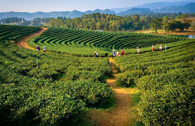 Rombongan kirab akan mengambil rute di beberapa lokasi wisata di kota tersebut ExploreBandung; Destinasi Wisata Kota Makassar