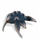Criaturas del planeta Monlyth ~ Spore Galaxies: The Fallen Placodermo%2Bde%2Barrecife%2B4